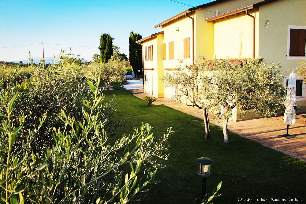 bb-ulivi-montefalco-umbria-giardino-piscina