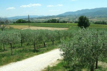 casolare nel verde in Umbria